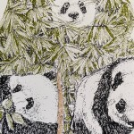 P is Panda Clare Halifax 3