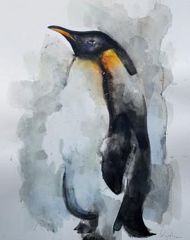 Penguin, Gavin Dobson, watercolour