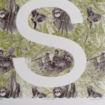 S is for Sloth Clare Halifax