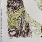 S is for Sloth Clare Halifax 1