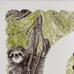 S is for Sloth Clare Halifax 3