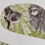 S is for Sloth Clare Halifax 4