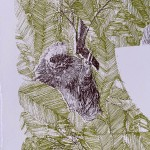 S is for Sloth Clare Halifax 5