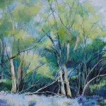 Sharon Williams Bruern Woods Original Art