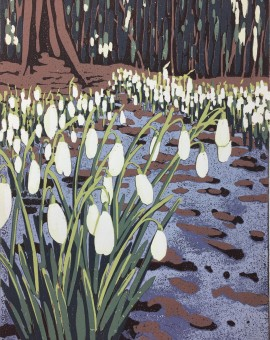 Snowdrops and Melting Snow - Alexandra Buckle