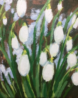 Snowdrops and Snow study 1