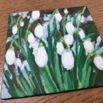 Snowdrops and Snow study 1 close up