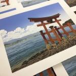Torii Sea View close up