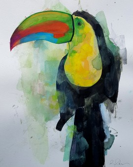 Toucan, Gavin Dobson, Watercolour