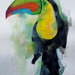 Toucan, Gavin Dobson, Watercolour