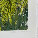 Tropical Overlook, Barbican Clare halifax 4