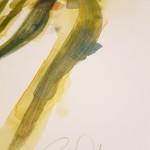 Tulips, Gavin Dobson, Watercolour3
