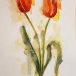 Tulips, Gavin Dobson, watercolour