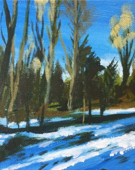 Woodland Snow study 1