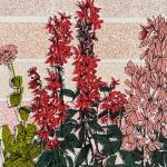 geranium flower bed, clare halifax 5