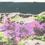 over_owler_tor_trail_running_dog_heather_yorkshire_border_collie_screenprint_katie_edwards_illustration_art copy