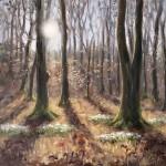 Marie Robinson Woodland Snowdrops Wychwood Art