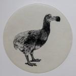 Tammy Mackay Dutch dodo LR