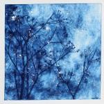 Winter winds, Charlie Davies main