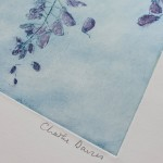 Wysteria, Charlie Davies – signature