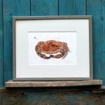 crab frame sarah d