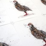 gb partridge print sheet