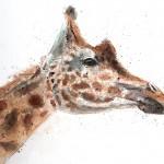 giraffe header