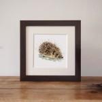 hedgehog frame