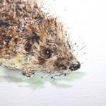hedgehog hairbrush 2