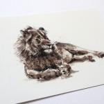 lion angle