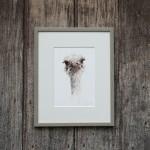 ostrich 1 sarah d frame