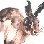 running hare head detail