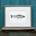 salmon frame sarah d copy