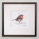 squat Robin frame