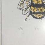 Bee ed
