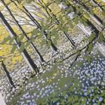 Bluebell Solitude close up WW