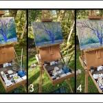 Lee Tiller – Birdsong in Springtime – progression – Wychwood Art