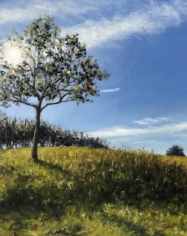 MARIE ROBINSON Sunlit Tree Wychwood Art