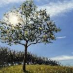 Marie Robinson Sunlit tree Detail 1_Wychwood Art