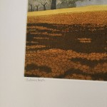 autumn heath title
