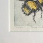 buzzing 4