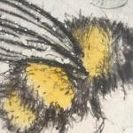 buzzing 5