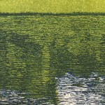 heath pond close