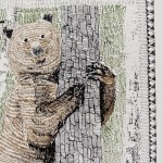 B is for Bear 5