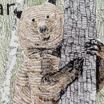 B is for Bear 6