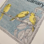 C is for Canary 7