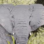 E is for Elephant 5