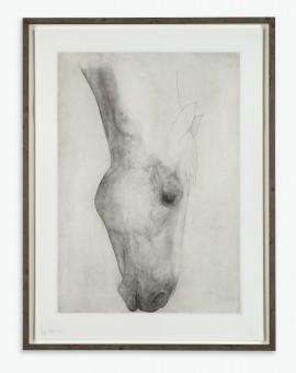 Guy Allen_Grazing horse_ edt_75_107x81cm framed copy