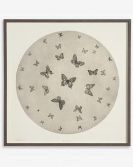 Guy Allen_Moon Butterflies_86x86cm_framed copy