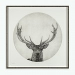 Guy Allen_Moon Stag_6 of 75_99x99cm framed 2